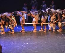 Folklore Bizian 2015: Hegoafrika